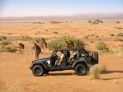 5 eme Jeep Sand Tour au Maroc